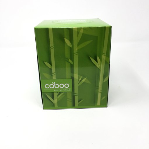 Picture of Bamboo and Sugarcane Facial Tissue - 90 count