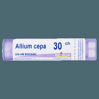Picture of Allium Cepa - 30 CH - 80 pellets