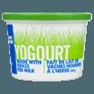 Picture of Yogurt