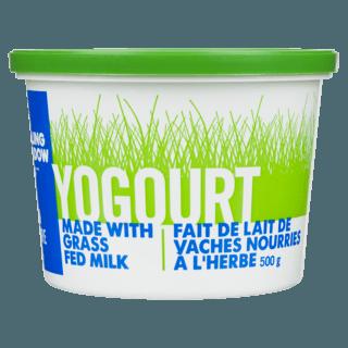 Picture of Yogurt - 2% Plain - 500 g
