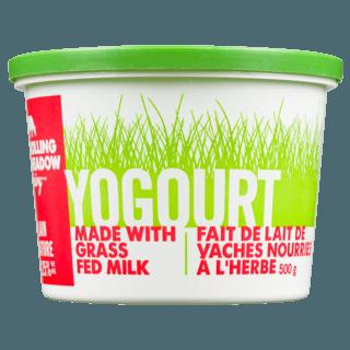 Picture of Yogurt - 3.25% Plain - 500 g