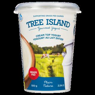 Picture of Cream Top Yogurt - Plain - 500 g