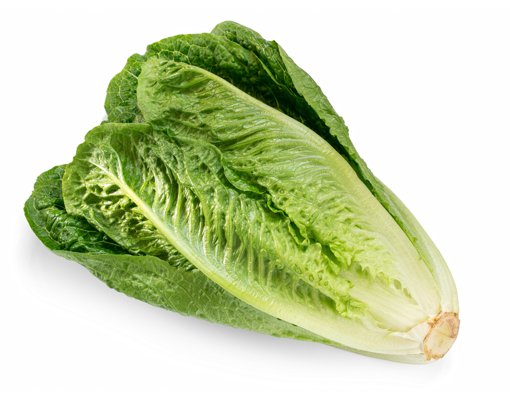 Picture of Romaine Lettuce - 1 each