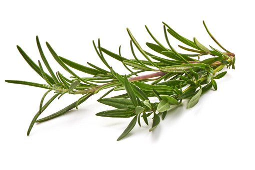 Picture of Rosemary Fresh Herbs - 28 g