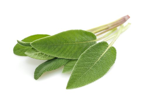 Picture of Sage Fresh Herbs - 28 g