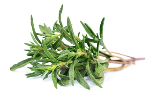 Picture of Thyme Fresh Herbs - 28 g