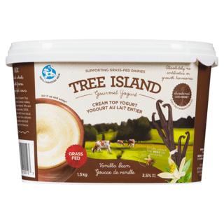 Picture of Cream Top Yogurt - Vanilla - 1.5 kg