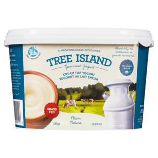 Picture of Cream Top Yogurt - Plain - 1.5 kg