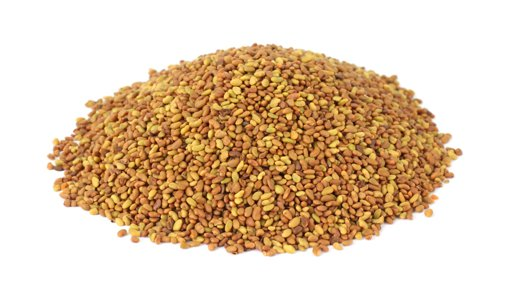 Picture of Alfalfa Seeds - per kg