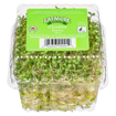 Picture of Clover Sprouts - 113 g