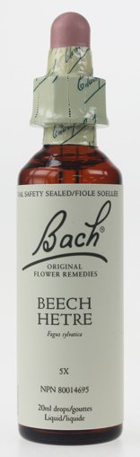 Picture of Beech - 20 ml