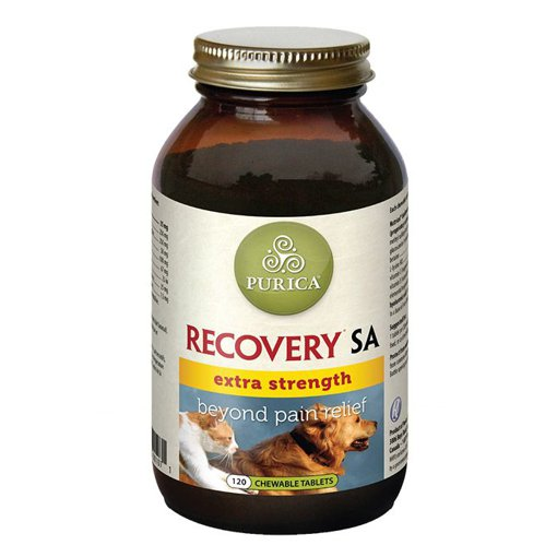 Picture of Recovery SA Extra Strength - 120 chews