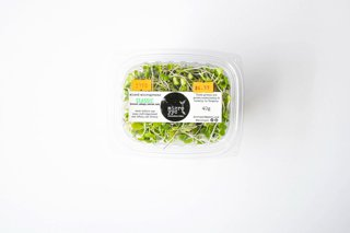 Picture of Sprouts - Classic Mix - Microgreens - 40 g