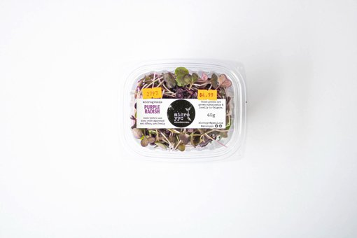 Picture of Sprouts - Purple Radish - Microgreens - 40 g
