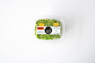 Picture of Sprouts - Arugula - Microgreens - 40 g