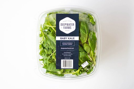 Picture of Aquaponic - Kale -Mix - 113 g